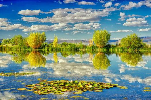 Photo Placid Pond - Dennis Frates