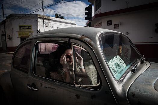 Photo Rebecca beetle - Formento+Formento