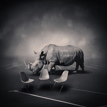 Photo DREAMSPACE RELOADED 49 - RHINOCEROS - Denis Olivier