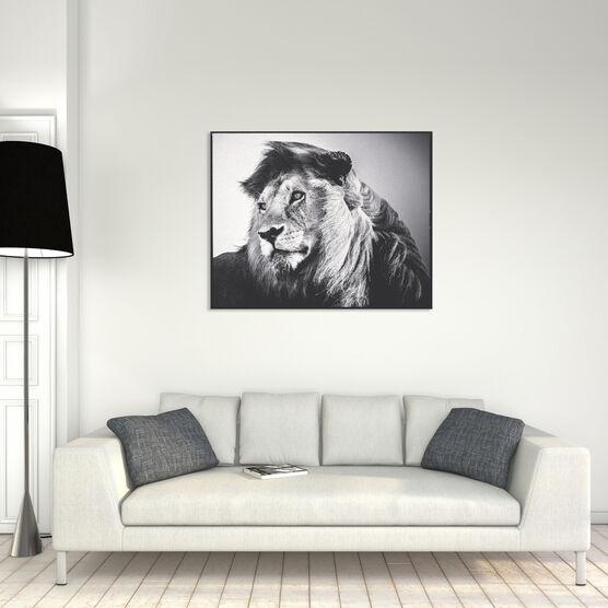 Photo Lion in the Wind 2 - Laurent Baheux