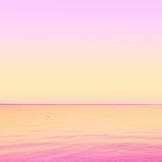 Vanilla Twilight