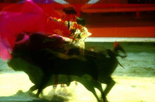 Photo Ronde de cape #5 - Alain Pons