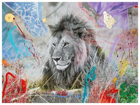 Animal Photo · Lion Photo · Elephant Photo YellowKorner