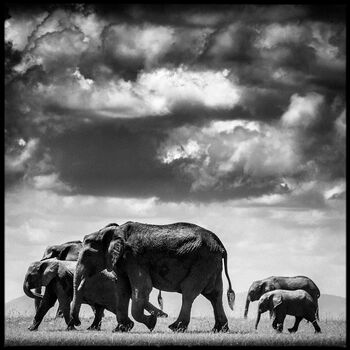 Photo Under the Clouds II - Laurent Baheux
