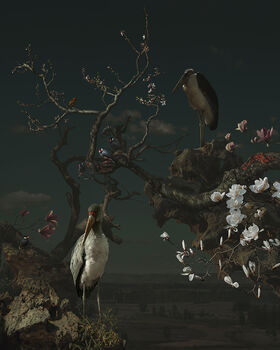 Photo MAGNOLIA AND CRANE - Yang Bin