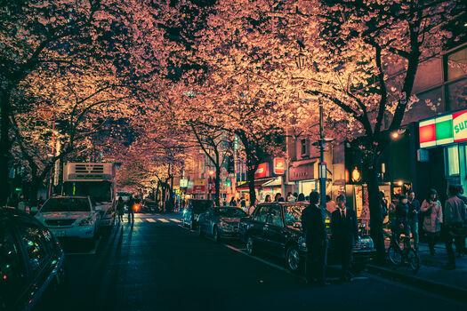 Photo TOKYO VII - Masashi Wakui
