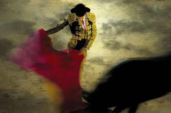 Photo Entrée dans la danse - Alain Pons