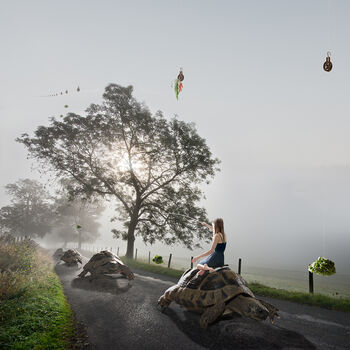 Photo On The Road Again - Alastair Magnaldo