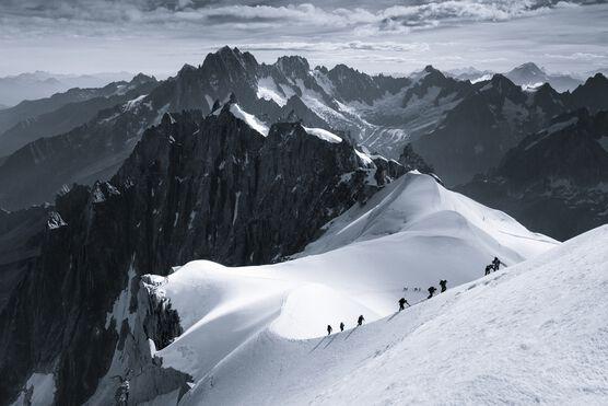 Photo The Scale of Nature - Jakub Polomski