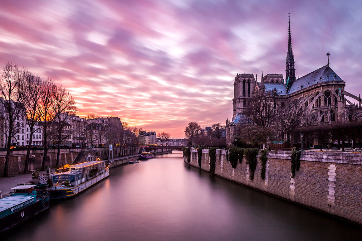Photograph Notre Dame Rose Serge Ramelli 183 Yellowkorner