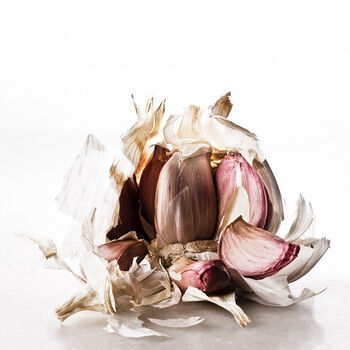 Photo FOOD WASTE GARLIC - Gildas Pare