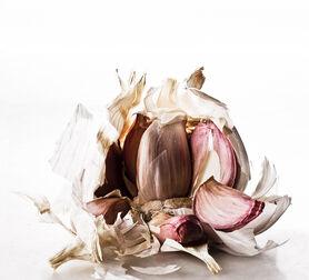 Photo FOOD WASTE GARLIC - Gildas Pare