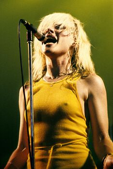 Photo Blondie - Jan Werner