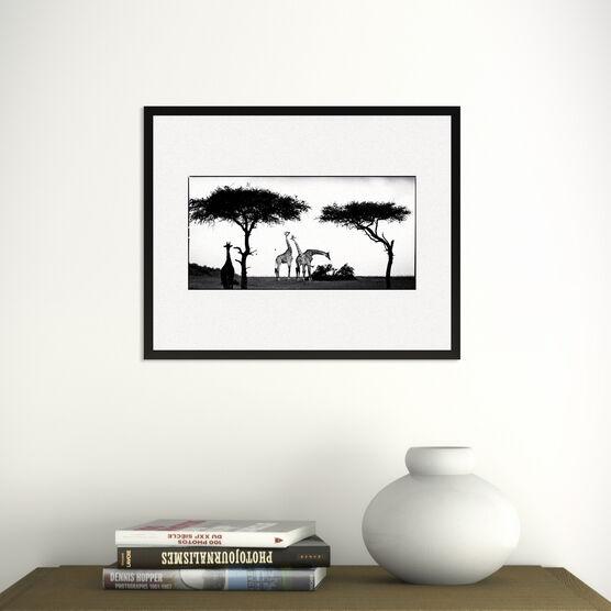 Photo Girafe Between Trees - Laurent Baheux