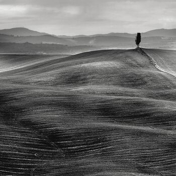 Photo Dune Toscane - Stefano Orazzini