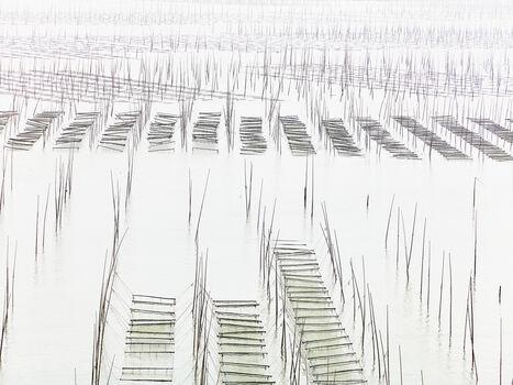 Photo Seaweed farm - Thierry Bornier