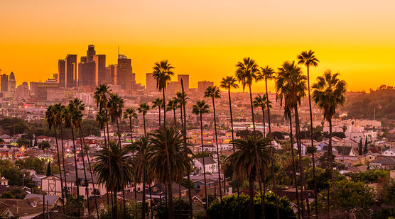 Photo SUNNY LOS ANGELES - Serge Ramelli