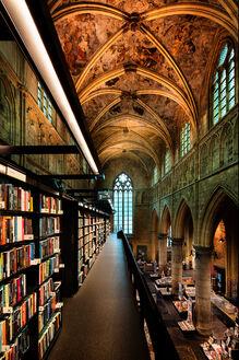 Dome of literature III