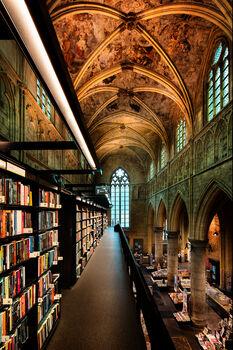 Photo Dome of literature III - Bernhard Hartmann