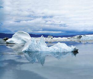 Procession d'icebergs