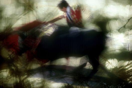 Photo Ronde de cape #6 - Alain Pons