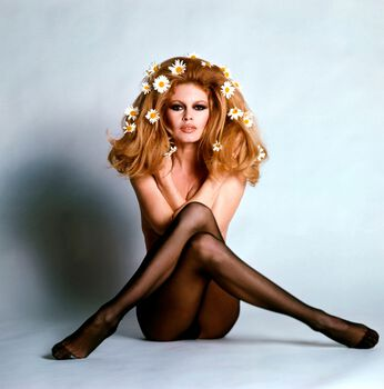 Photo Les marguerites I - Ghislain Dussart