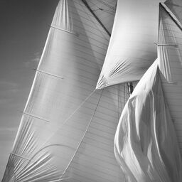 Sails of the Mariette study 5