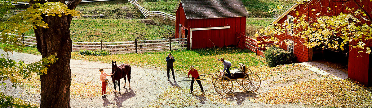 Photo FARMYARD AND HORSE 1967 - Colorama