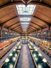 Bibliothèque de l'Hôtel de Ville II