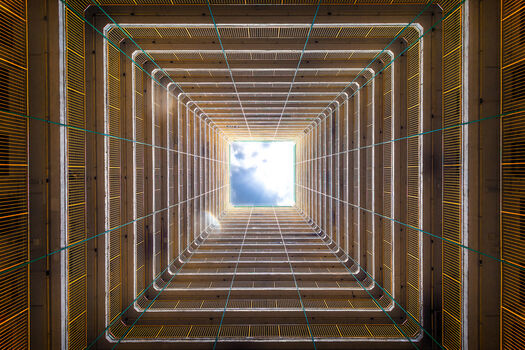 Photo Trapped - Andy Yeung