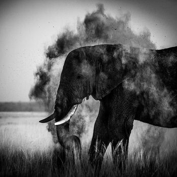 Photo DUST EXPLOSION 6 - Laurent Baheux