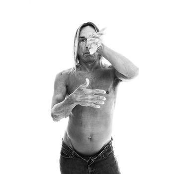 Photo The Rock Iguana - Xavier Martin