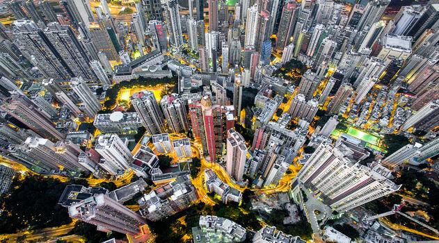 Photo Urban jungle 04 - Andy Yeung