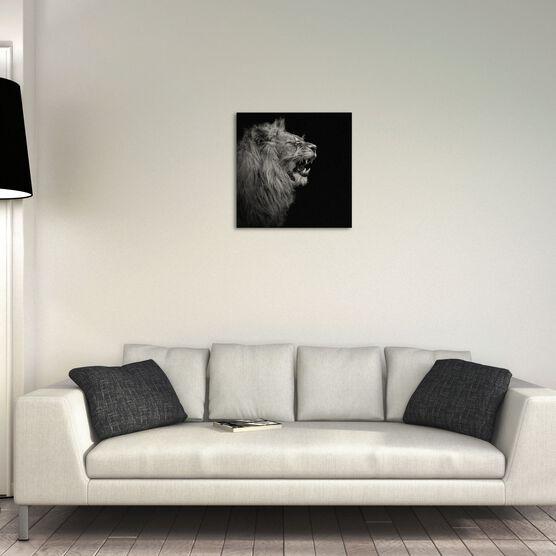 Photo YOUNG LION I - Lukas Holas