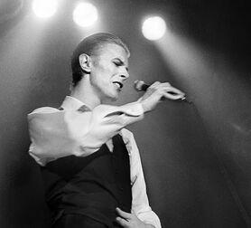 Photo Bowie - Jan Werner
