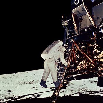 Photo Module lunaire Eagle - Neil Armstrong