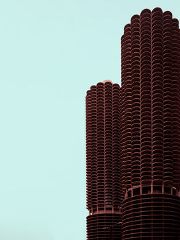 Photo FLOWER TOWER CHICAGO - Ludwig Favre