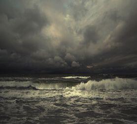 Photo Movement V - Michal Karcz