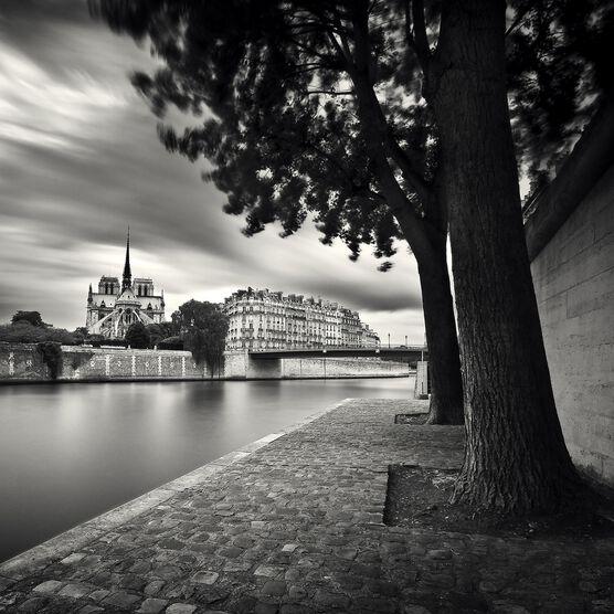 Photo ÎLE DE LA CITÉ - Damien Vassart