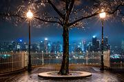 THUNDERSTORM NIGHT   NEW YORK CITY