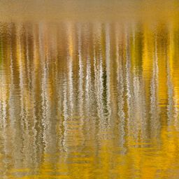 AUTUMN REFLECTIONS IN MOUNTAIN LAKE IV