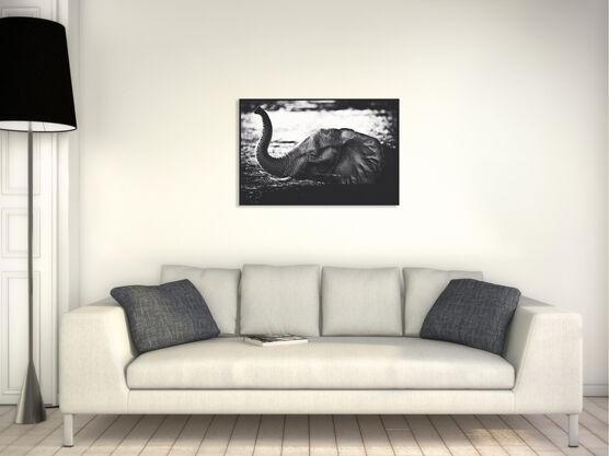 Photo Elephant Crossing the River - Laurent Baheux