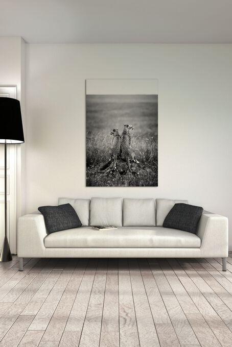 Photo FOR LIFE - Laurent Baheux