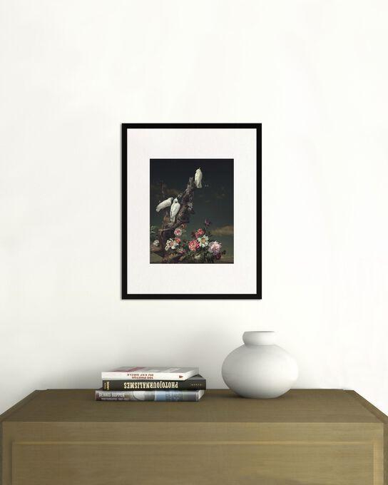 Photo THREE WHITE BIRDS - Yang Bin