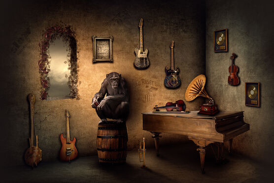 Photo THE MUSIC DEALER - Nicole Holz