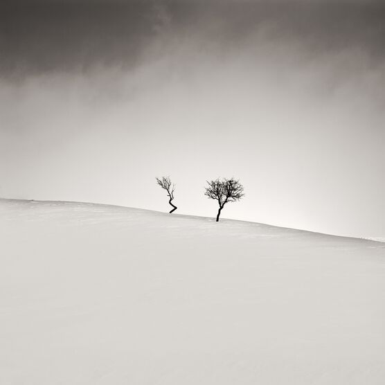 Photo Degenerate - Ebru Sidar