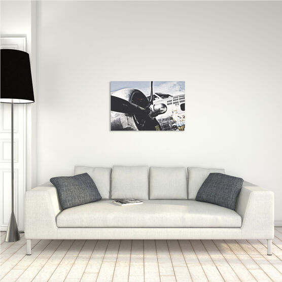 Photo Bomb Shell - Olivier Lavielle