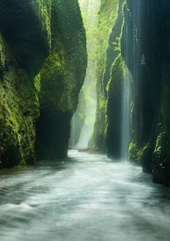 Photo Rainforest Canyon Oneonta Gorge Oregon - Marc Adamus