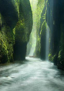 Photo Rainforest Canyon Oneonta Gorge Oregon - Marc Adamus