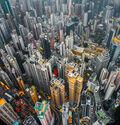 Photo Urban jungle 01 - Andy Yeung